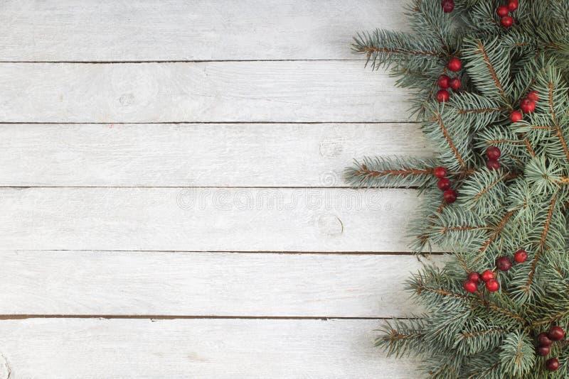 Kerstmissamenstelling van spartakken en bessen van viburnum op een witte houten achtergrond Hoogste mening met exemplaarruimte stock fotografie