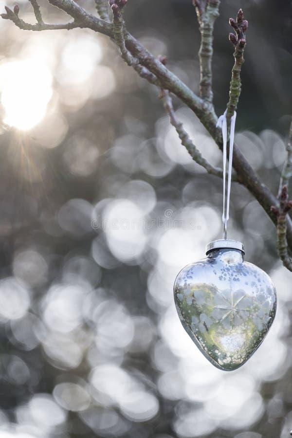 Kerstmissnuisterij die buiten hangen royalty-vrije stock foto