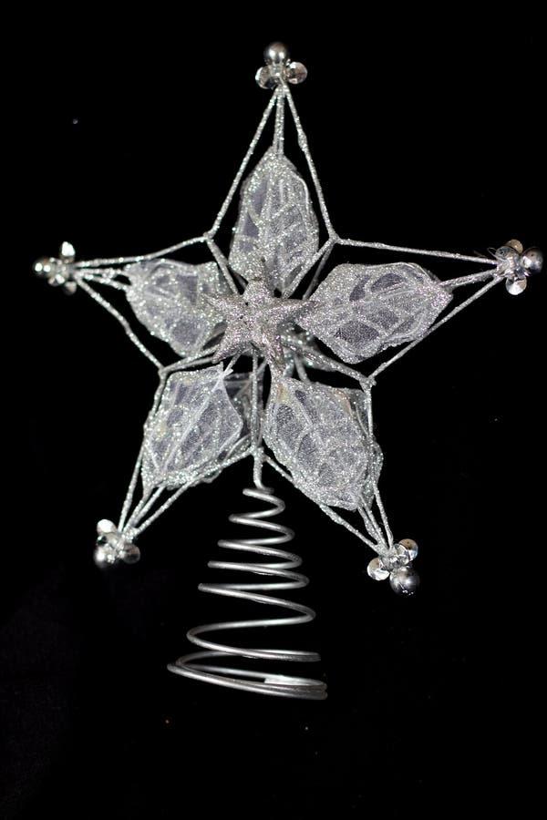 Kerstmisster royalty-vrije stock fotografie