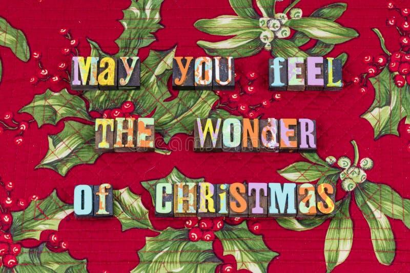 Kerstmiswonder de vriendelijkheidstypografie van de vreugdeliefdadigheid royalty-vrije stock fotografie