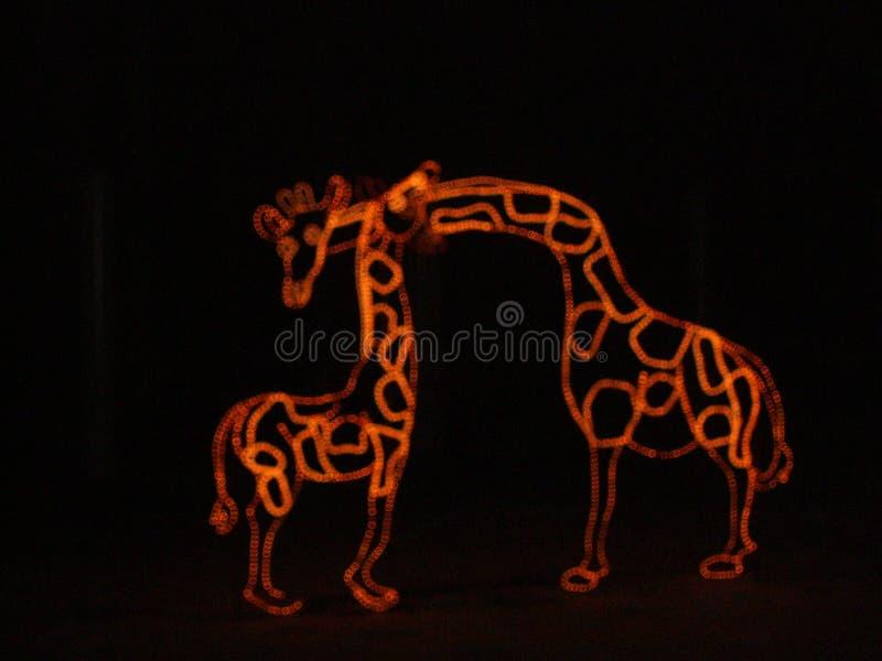 Kerstnacht bij dierentuin royalty-vrije stock fotografie