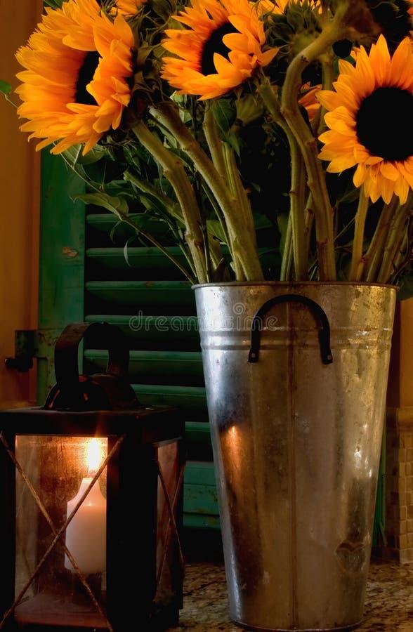 Kerze-helle Sonnenblumen stockfotografie