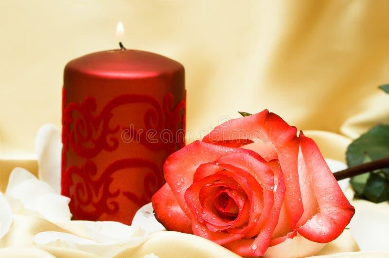Kerze mit Blume stockbilder