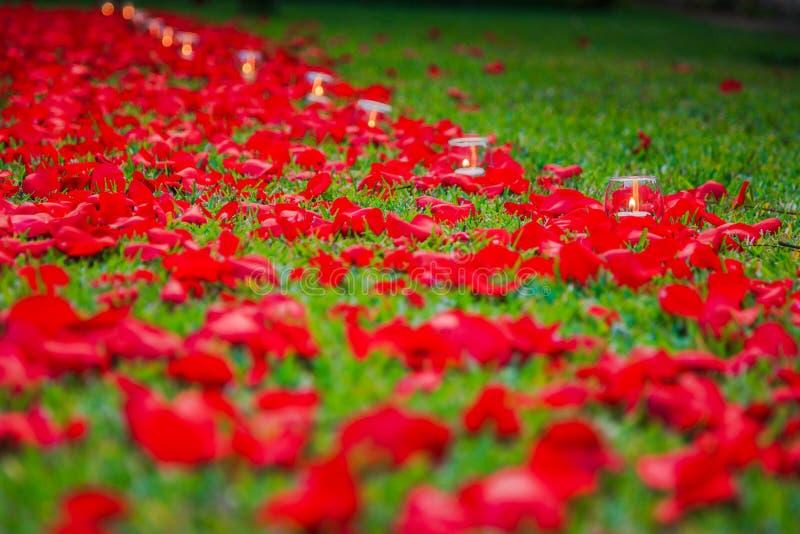 Kerzen- und Rosenblumenblattweg stockfoto
