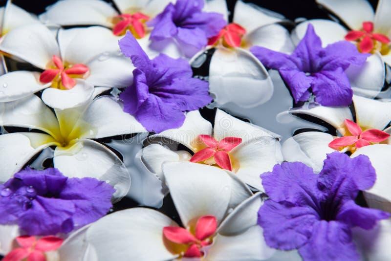 Kerzen und schöne Blumen im Wasserbadekurort stockfotografie