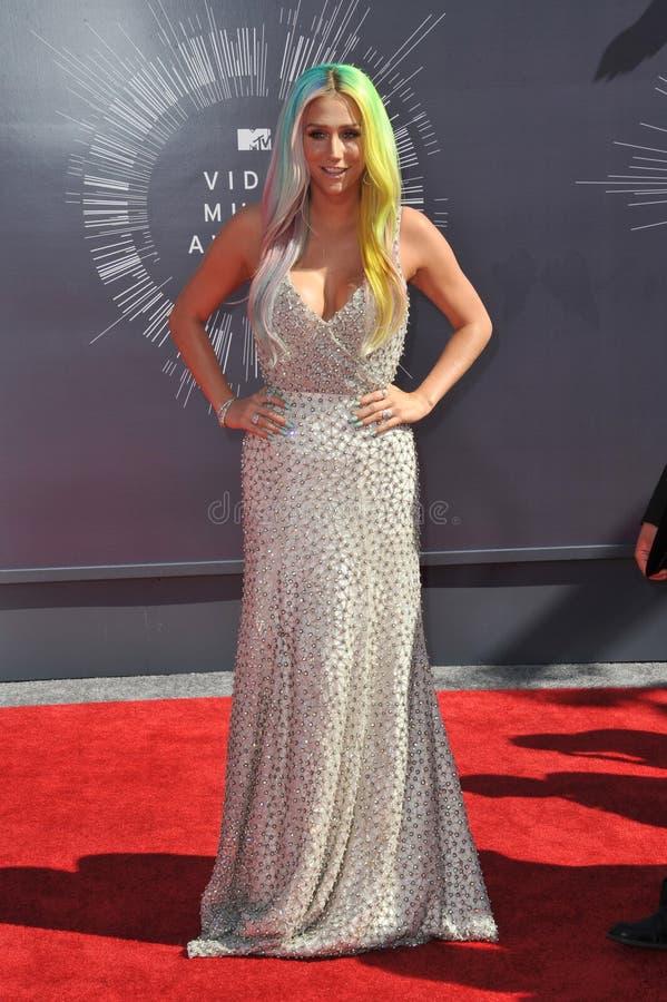 Kesha royalty-vrije stock foto's
