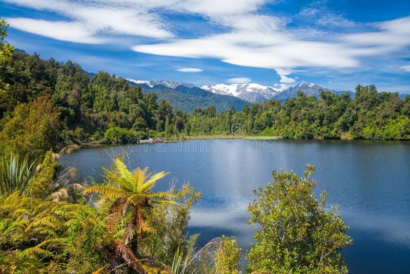 Ketelmeer Mapourika in Nieuw Zeeland stock afbeelding