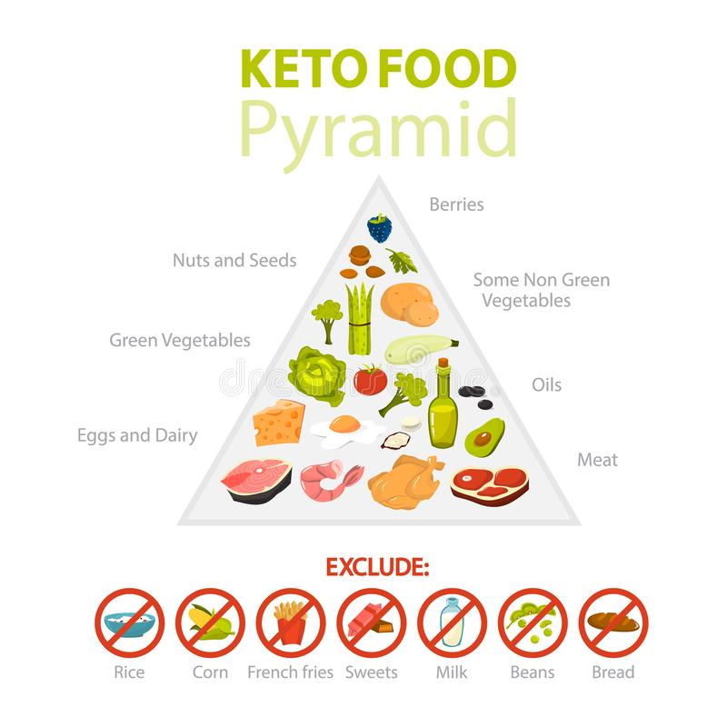 Keto Diet Concept Food Diagram Showing Percentage Stock Manual Guide