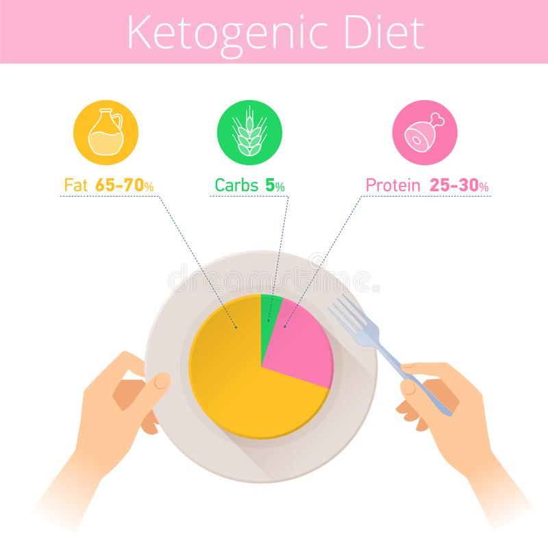 Keto diet infographic. Hands, fork and plate with ketogenic diagram. Keto diet infographic. Hands are holding fork and plate. Flat illustration of ketogenic vector illustration