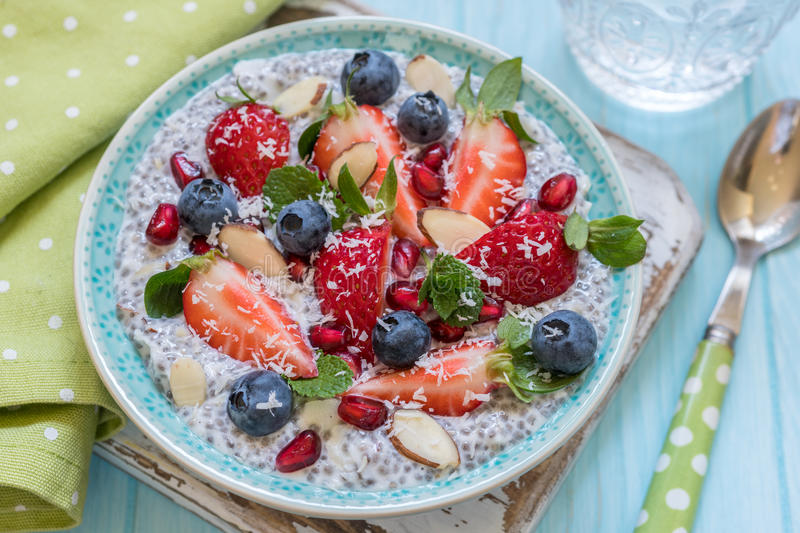 Keto ketogenic, paleo low carb diet not oatmeal breakfast porridge. Coconut Chia Pudding with berries, pomegranate seeds. Keto ketogenic, paleo low carb diet not stock photos