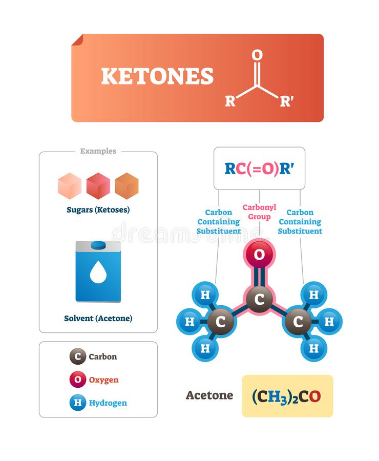 Ketones vector illustration. Sugars and solvent chemical organic compound. Ketoses and industrial acetone example. Labeled educational scheme with isolated vector illustration