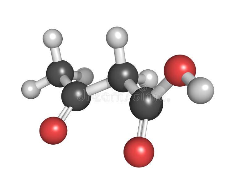Ketonlichaam (acetoacetic zuur), moleculair model stock illustratie