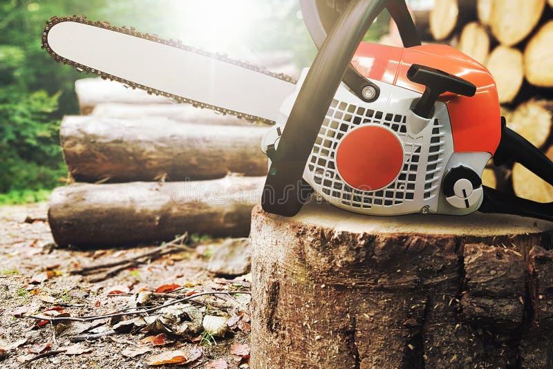 Kettensäge auf einem Baumstamm lizenzfreie stockfotos