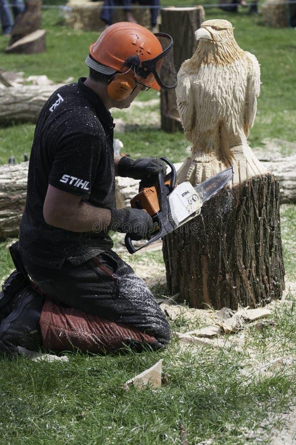 Kettingzaaghoutsnijwerk een adelaarsbeeldhouwwerk in hout stock foto's
