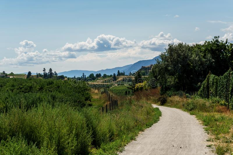 Kettle Valley Railway biking trail through orchards in summer near Penticton British Columbia Canada. royalty free stock photos