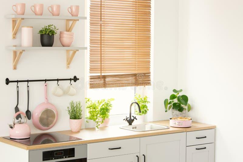 Keukengereedschap en toebehoren, installaties, vensterbladen en planken op de muur in het moderne keukenbinnenland Echte foto stock foto's