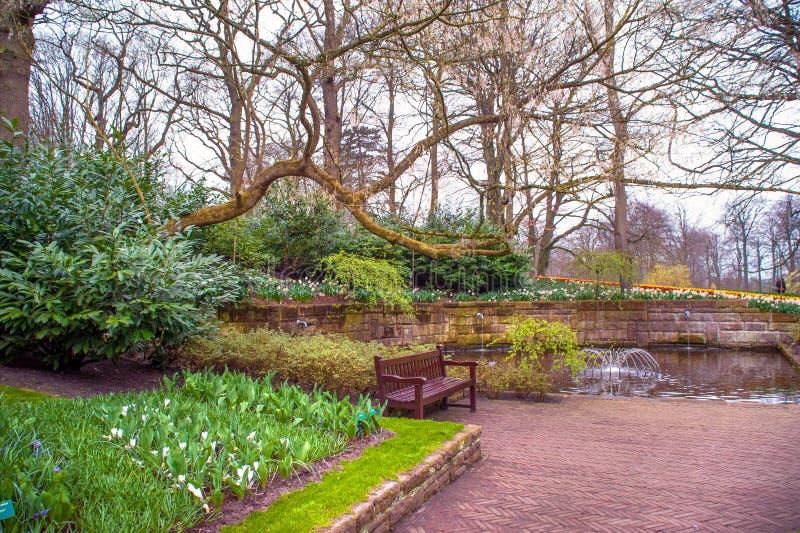 Keukenhof botanic garden in early spring time stock images