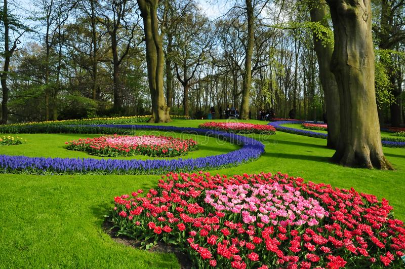 Download Keukenhof Garden The Worlds Largest Flower Gardens Situated In Lisse Netherlands