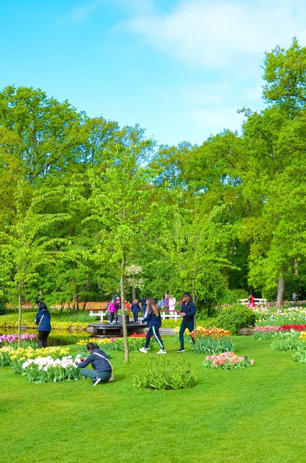 Keukenhof, Lisse, Нидерланд - 28-ое апреля 2019: Посетители идя в изумлять сады Keukenhof во время весны Зеленые деревья стоковая фотография