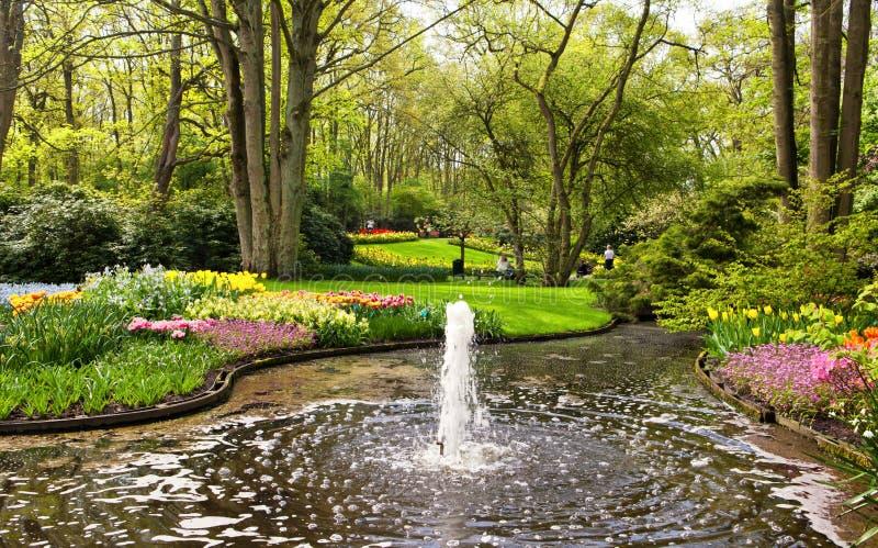 Download Keukenhof, Netherlands stock photo. Image of blossoms - 24909974