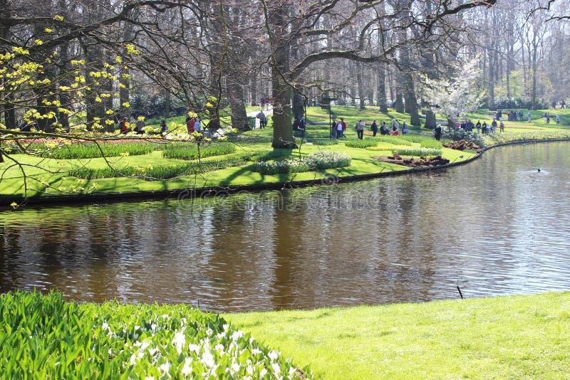 Keukenhof-Park in den Niederlanden lizenzfreies stockfoto