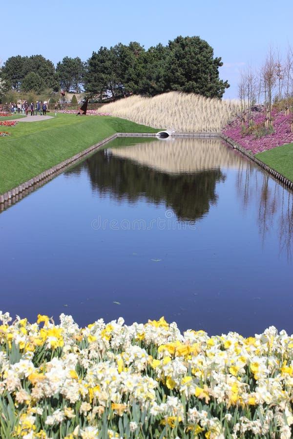 Keukenhof-Park in den Niederlanden lizenzfreie stockfotos