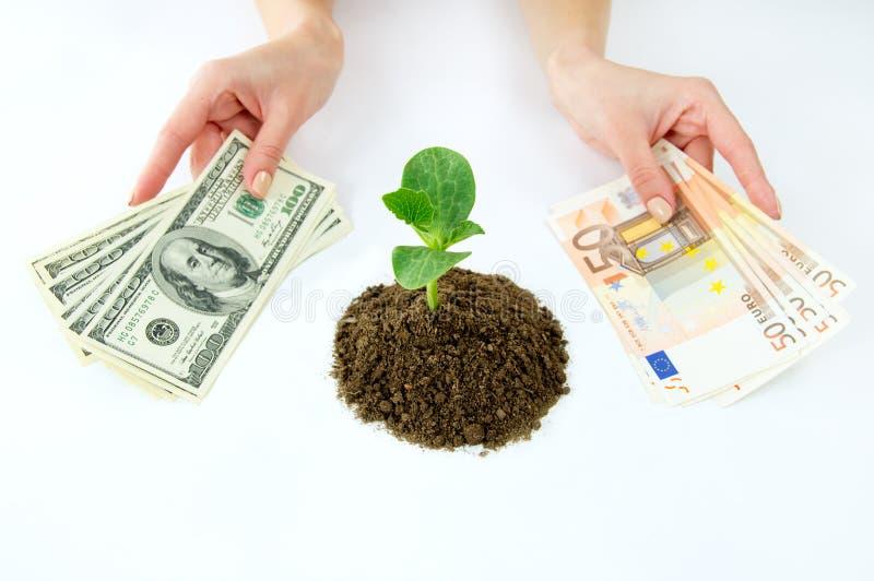 Keus tussen gelddollars, Europees geld stock afbeeldingen