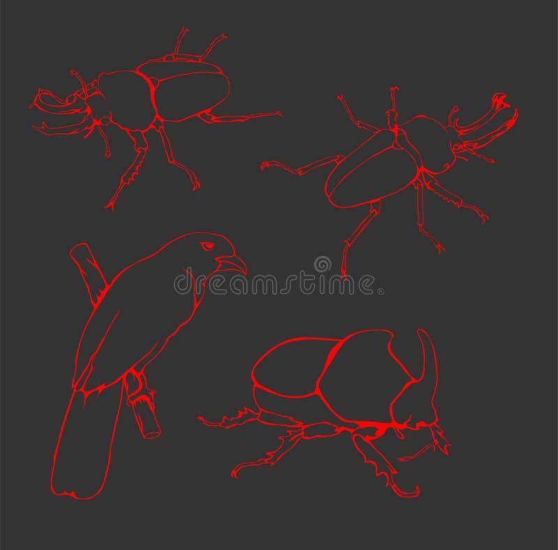 Kever - Vogellijn Art Vector stock afbeelding