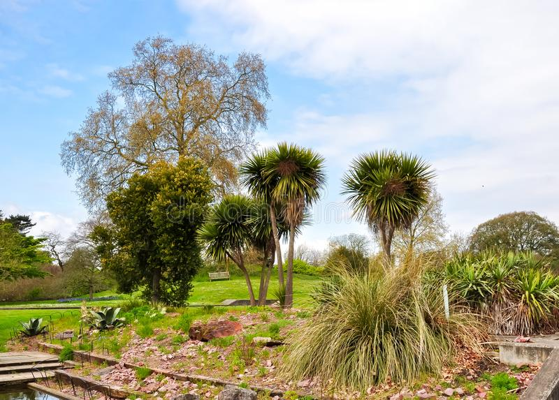 Kew植物园在春天,伦敦,英国 免版税库存照片