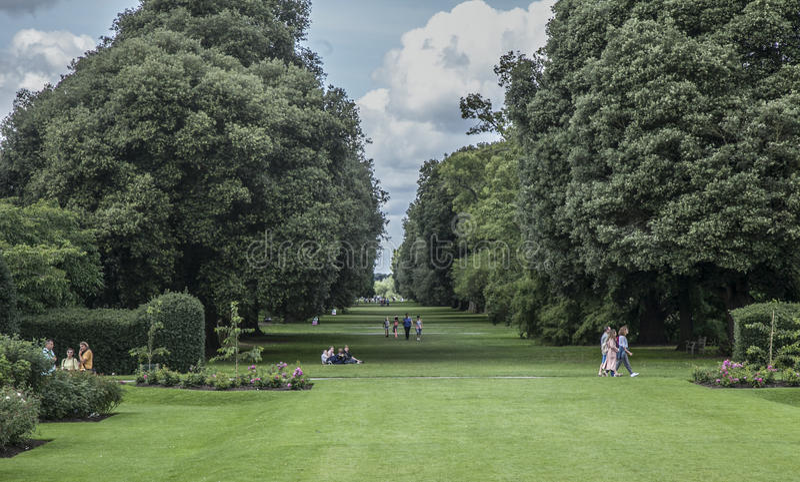 Kew Garden, the park. royalty free stock photography