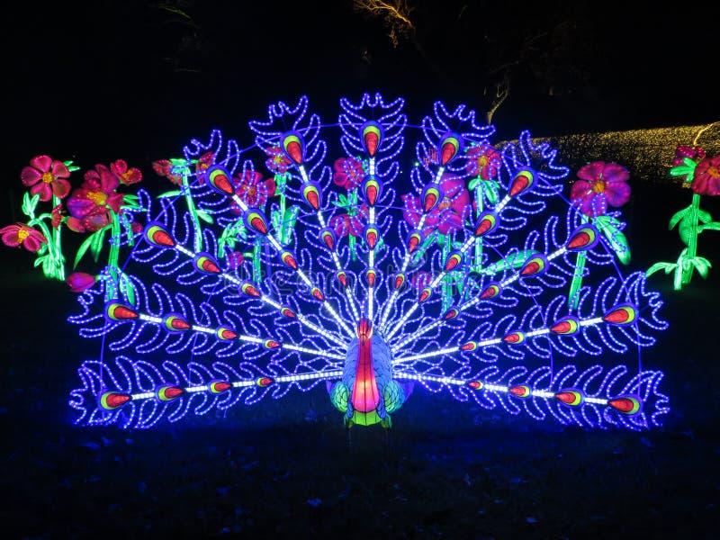 Kew Gardens Christmas stock photo