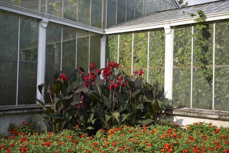 Kew-Gartenglashaus lizenzfreie stockfotos