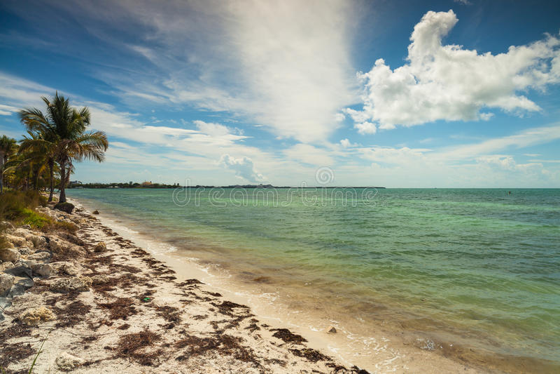 Key Biscayne海滩 免版税库存照片