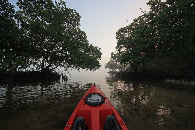 Red kayak at sunrise in Bear Cut, Florida. stock photography