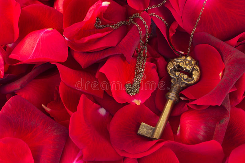 Download Key With Crimson Rose Petals Stock Photo - Image: 36589702