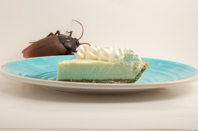 Key lime Pie on blue plate stock photography