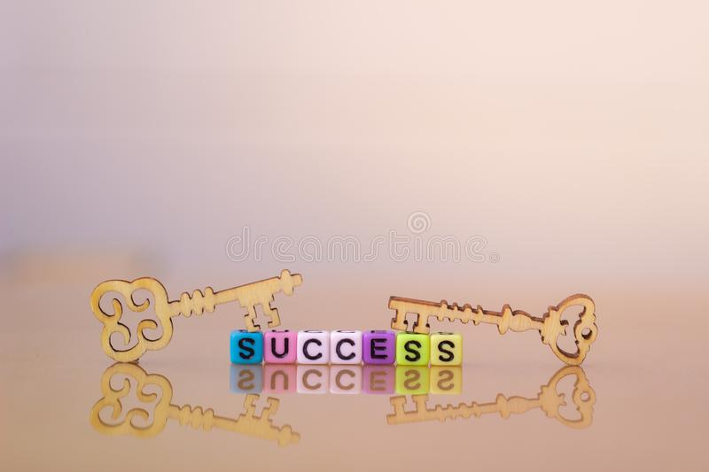 Key to success. Wood Key. Key to success. Wood Key and block word SUCCESS vector illustration