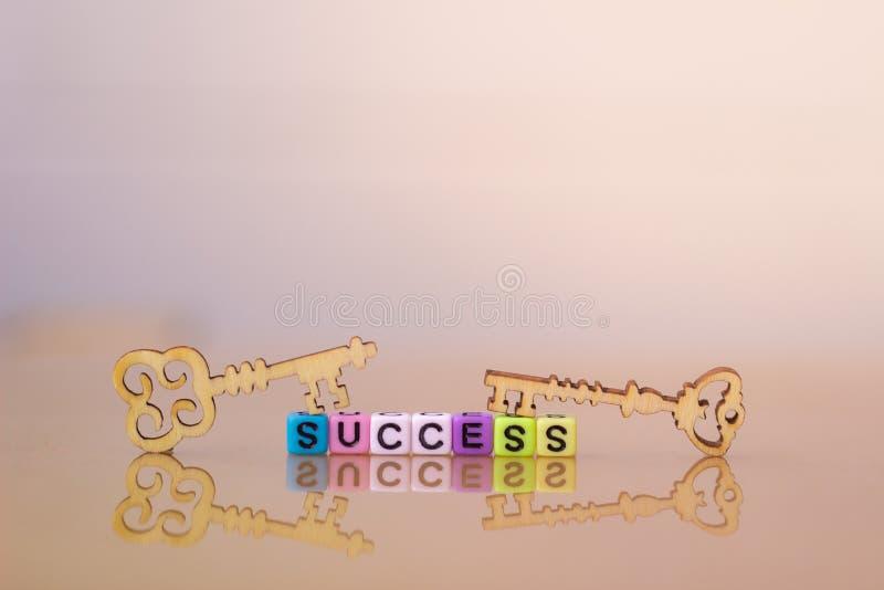 Key to success. Wood Key. vector illustration