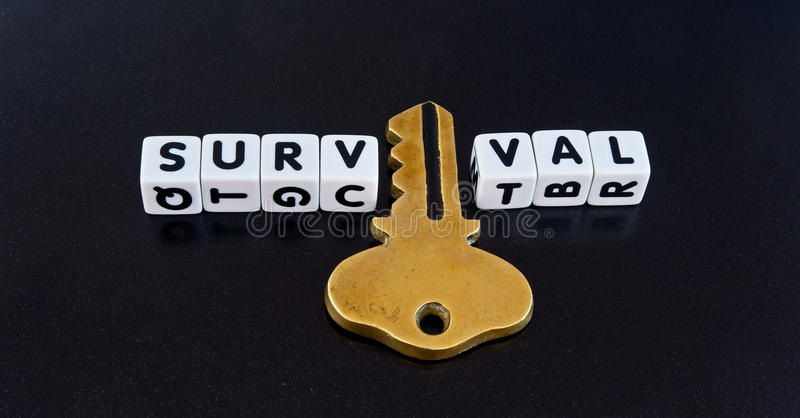 Key to survival. Text ' survival ' in black uppercase letters on small white cubes with a gold key replacing the letter ' i ' on a dark background royalty free stock photo