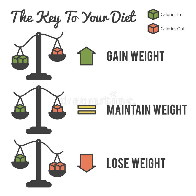 The Key to Your Diet. Illustration of the key to your diet royalty free illustration