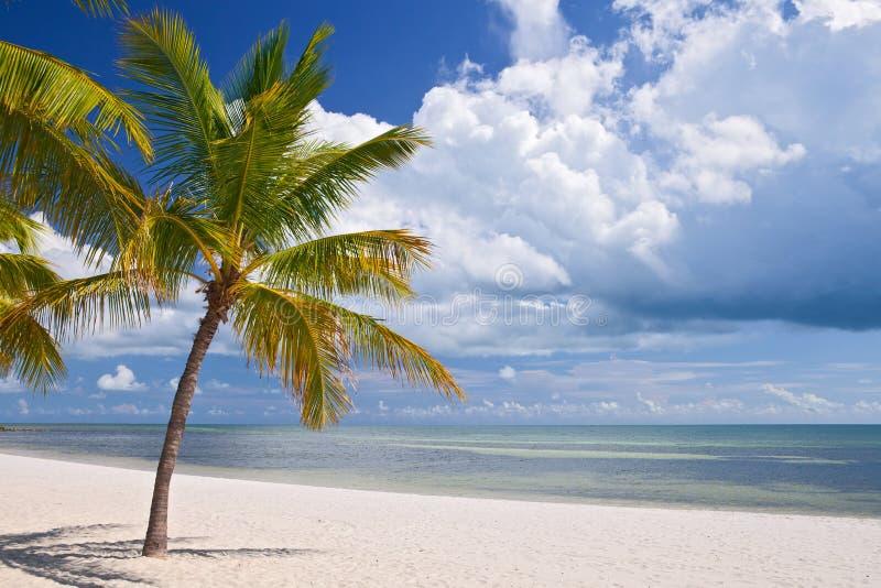 Key West Флорида, красивый ландшафт пляжа лета стоковые изображения