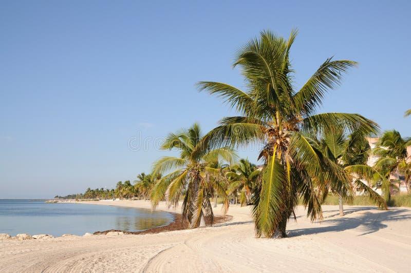 Key West Beach, Florida royalty free stock photo