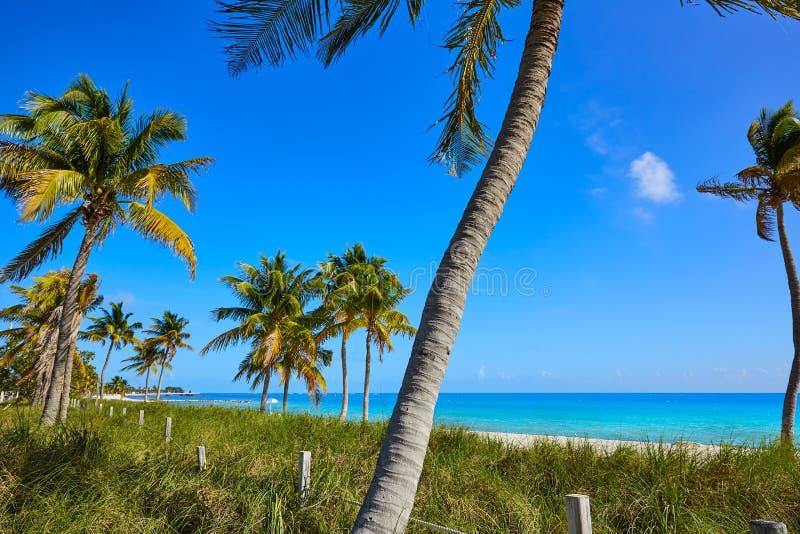 Key west florida Smathers beach palm trees US stock images