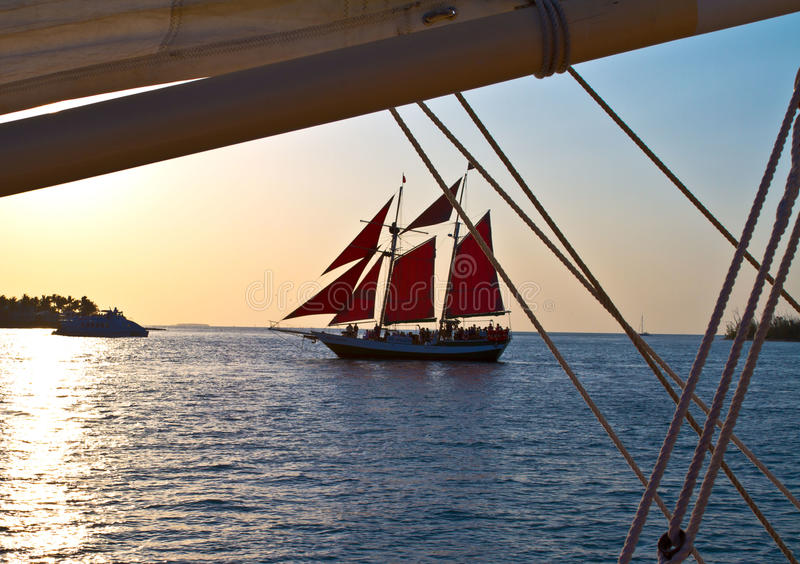 Key West Sailing for Sunset royalty free stock image