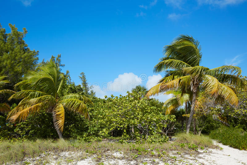 Key West-strandfort Zachary Taylor Park Florida stock afbeeldingen