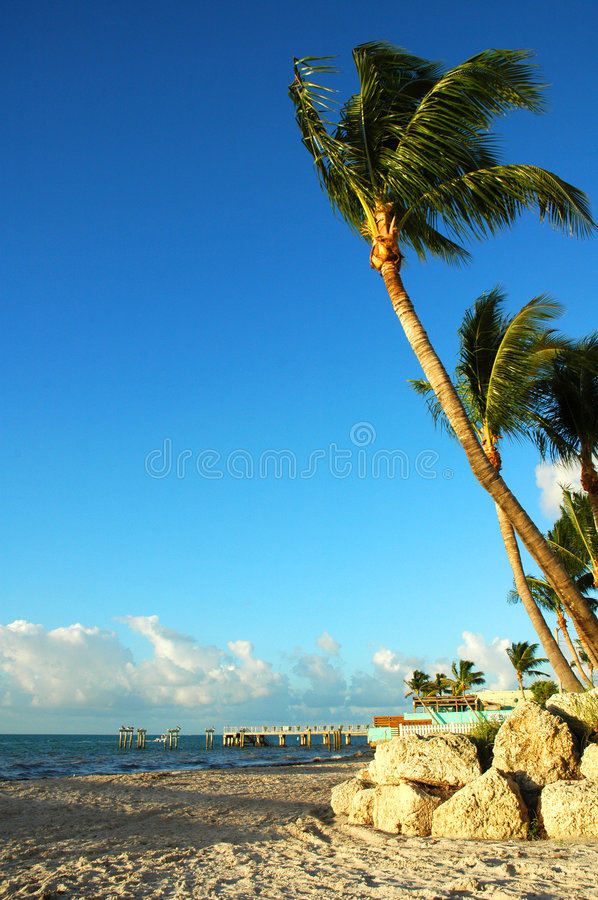 Key West At Sunrise royalty free stock images