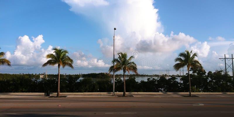 Key West w ranku obraz royalty free