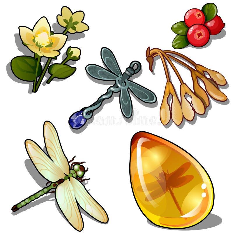 Keychain dragonfly, insekta bursztyn, kwiat i czerwieni jagoda, Naturalny set sześć ikon odizolowywających wektor ilustracji