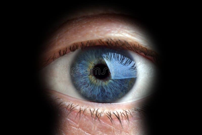 keyhole смотря человека стоковое изображение rf