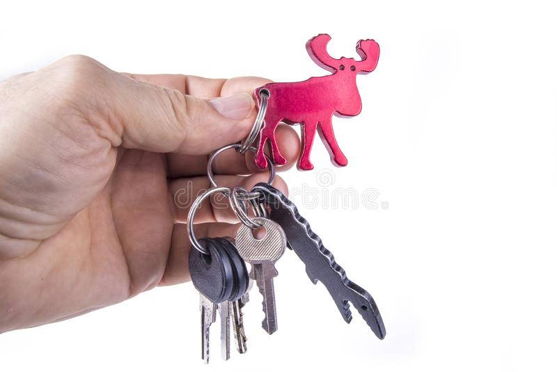 Keys with a keychain on a white background.  stock photo